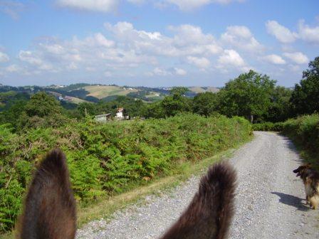 Randonnée avec un âne : nous vous fournissons une carte topographique et les explications nécessaires au bon déroulement de la randonnée